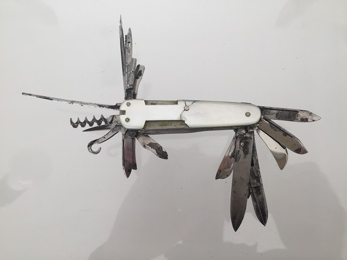 Knife with 22 tools and mother of pearl scales